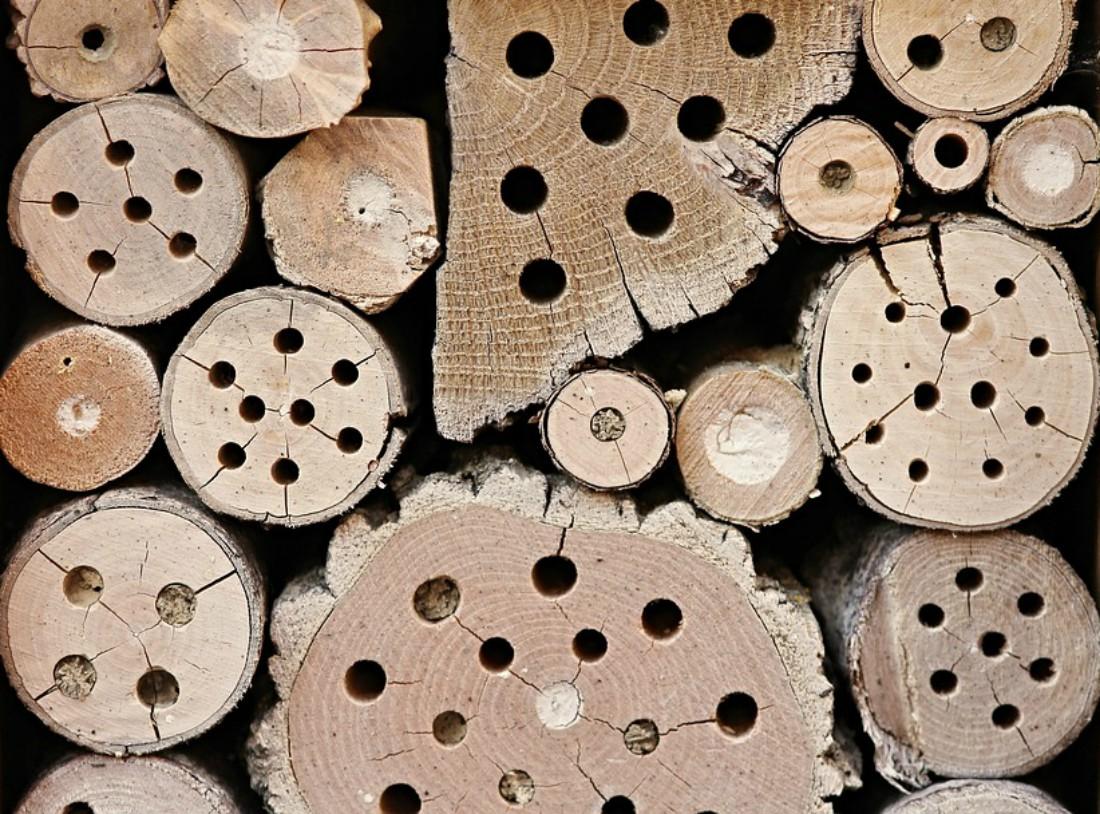 fresa a tazza per forare il legno