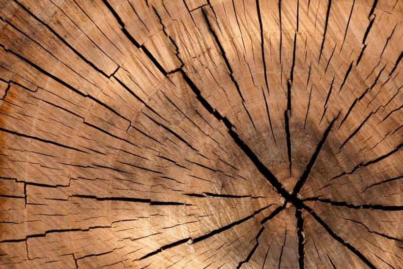 Come e perché levigare il legno